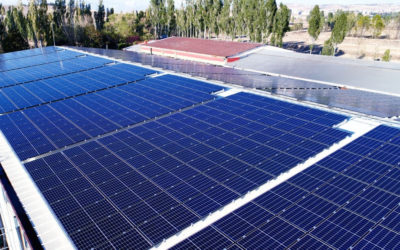Solar Panel – What You Need to Know